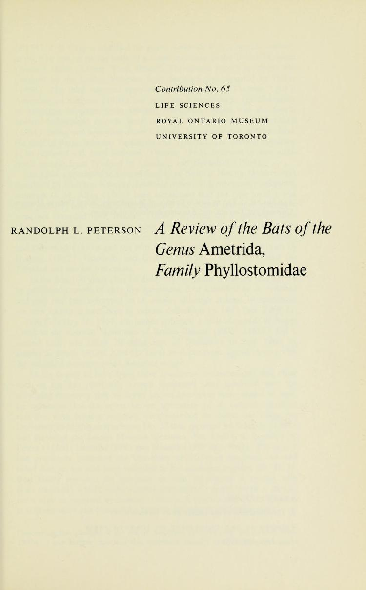 A review of the bats of the genus <i>Ametrida</i>, Family Phyllostomidae