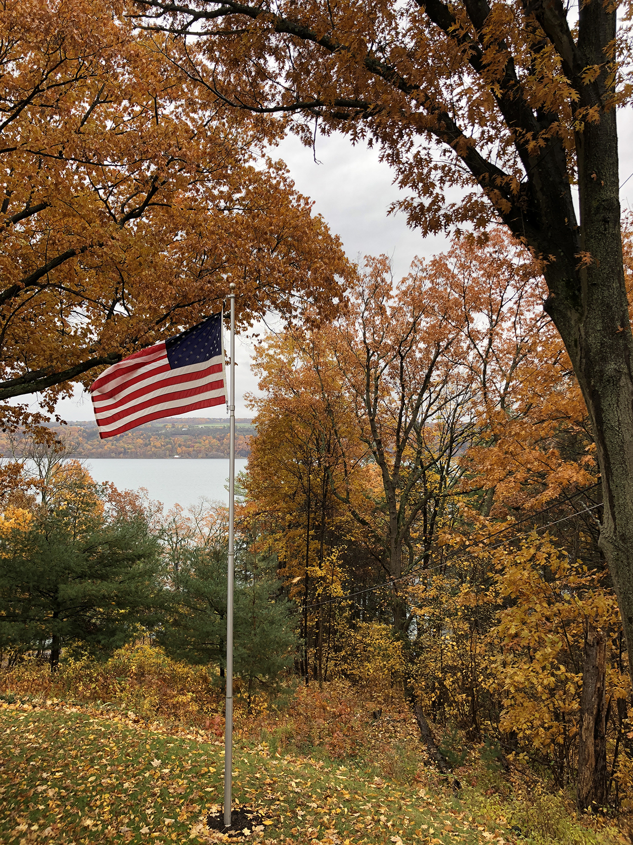 Fall Election in Tompkins County (photo)