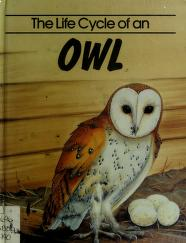 Cover of: The life cycle of an owl | Jill Bailey