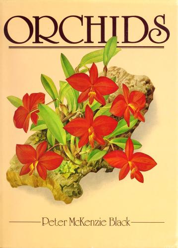 Cover of: Orchids | Peter McKenzie Black